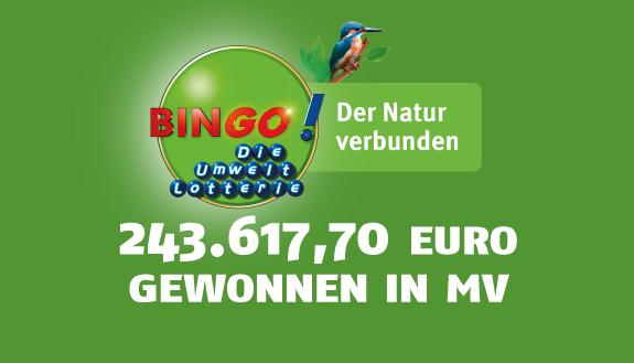 bingo jackpot wohin